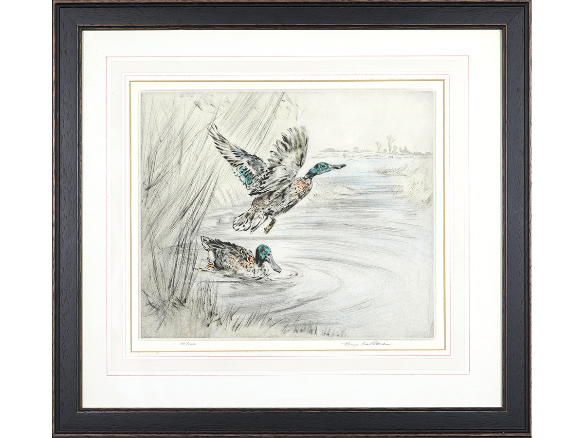 Henry Wilkinson, Mallards, Limited Edition Signed Etching, Hand Coloured